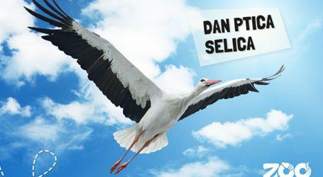 Bogat edukativni i zabavni program u zagrebačkom ZOO-u za Dan ptica selica