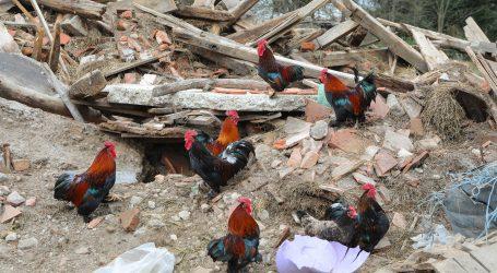 Na Banovini prijavljeno 39.757 oštećenih objekata, pregledano 37. 720