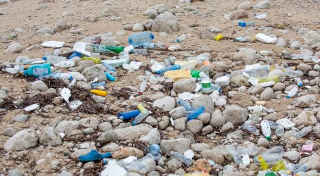 Aktivist na plažama Novog Zelenda sam prikupio 29 tona otpada