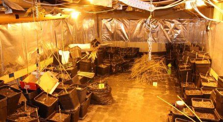 Policija u selu kraj Zaprešića pronašla improvizirani laboratorij i više od šest kila marihuane, pogledajte fotografije