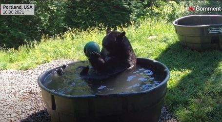 Duga tradicija: Crni medvjed Takoda i ovog ljeta uživa u svom 'bazenu'