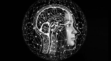 NOVI SMJER U ISTRAŽIVANJU: Zašto se zbog uloge crijeva u organizmu počinje propitivati primat mozga