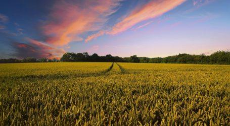 Radionica precizne poljoprivrede: Dronovima do jeftinije i produktivnije proizvodnje