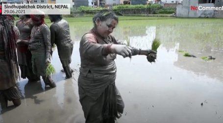 U Nepalu tradicionalna ceremonija Festivala riže uključuje i bacanje u blato