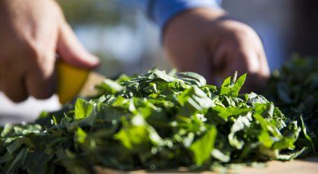 Zeleno povrće je važno za zdravlje mišićno-koštanog sustava