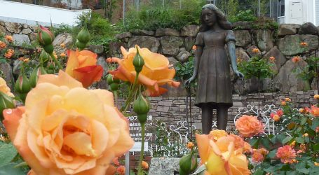 Posljednji zapis Anne Frank, dnevnik joj je bio podrška i utjeha