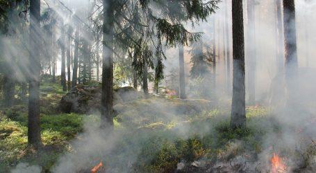 Ljeto u vatri: Ekolozi strahuju da bi požari u Rusiji mogli doseći povijesne razmjere
