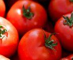Hidracija voćem i povrćem ljeti je iznimno važna