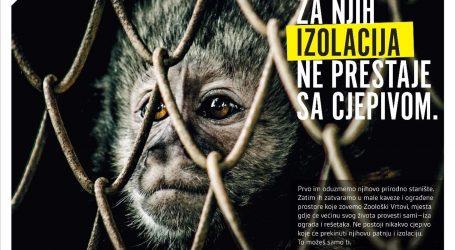 """Kampanja """"Zaobiđi zoološki"""": Životinje su svjesna bića koja žele slobodu, a doživotni su zatočenici. U boli postaju blijede sjenke samih sebe"""