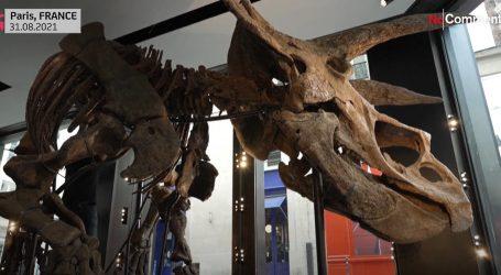 'Big John': Kostur dinosaura od osam metara izložen u galeriji u Parizu