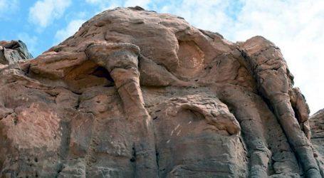 Kameni reljefi deva u Saudijskoj Arabiji stariji su od sedam tisuća godina