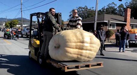 Kalifornija: Pobjednička bundeva na velikom natjecanju težila čak 993 kilograma